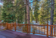 back deck to forest
