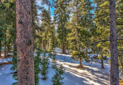 forest no deck rail